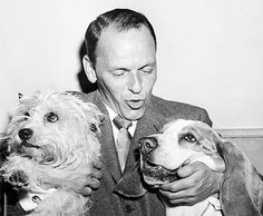 Frank Sinatra with Snuffy, the Carrin Terrier and runner up the Bassett Hound for My Pal Joey.