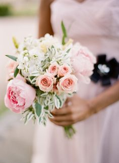 Gallery & Inspiration | Category - Flowers | Picture - 2296932