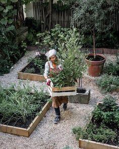 Längtar lite extra när solen skiner ute 🌿 #odla #trädgårdsliv #trädgårdsinspo #trädgårdsarbete #garden #plants