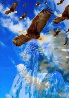 Native American Images, Native American History, Native American Indians, Indian Paintings, Western Art, First Nations, Eagles, Bald Eagle, Fantasy