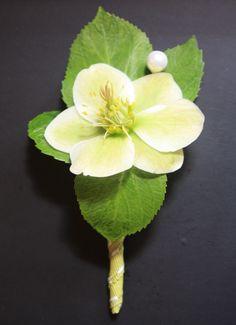 Beautiful Helibore buttonhole