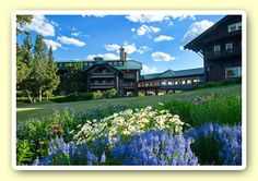 Glacier Park Lodge in East Glacier. Stayed here and its so rustic and cute