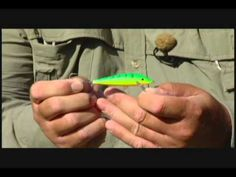 powerbait fishing rigs for rainbow trout | fishing, trout fishing, Fly Fishing Bait