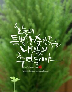 Calligraphy Alphabet, Calligraphy Fonts, Korean Design, Typography, Lettering, Great Words, Famous Quotes, Handwriting, Sayings