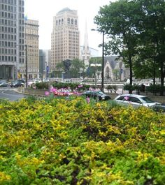 Bus Shelter in Philly Gets a Mini-Green Roof