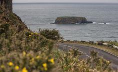 Découvrez l'Irlande en moto Water, Outdoor, Ireland, Pathways, Gripe Water, Outdoors, Outdoor Living, Garden, Aqua