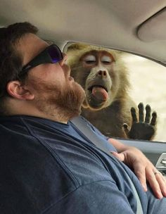 After Husband Falls Asleep In The Car, Wife Hosts Photoshop Battle To Show Him What He Missed (40 Pics) Stupid Funny Memes, A Funny, Funny Shit, Funny Stuff, National Lampoons Vacation, Pennywise The Dancing Clown, Family Road Trips, Bored Panda, New Image