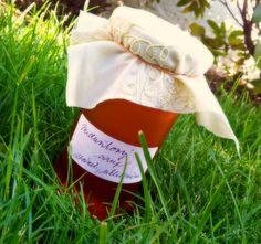 Recept: Meduňkový sirup | Lohas magazín Syrup