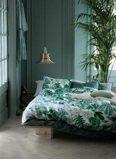 chambre à coucher design vert bleu, sol en bois clair, murs bleu vert, plante verte d intérieur