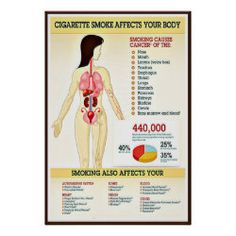 Cigarette Smoking Infographic Poster