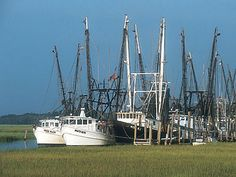 Shrimp Boats in Beaufort, SC
