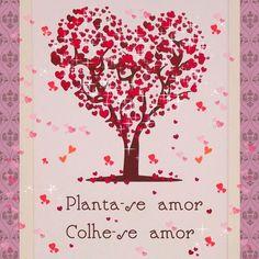 Planta-se Amor Colhe-se Amor