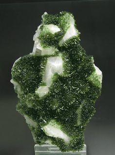 Epidote with twinned Calcite