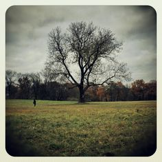 Trying to reproduce the Instagram filter preview thumbnail in autumn.