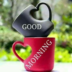Morning Heart Mugs Good Morning Love, Morning Msg, Funny Good Morning Quotes, Morning Greetings Quotes, Good Morning Picture, Good Morning Friends, Good Morning Messages, Good Afternoon, Morning Pictures