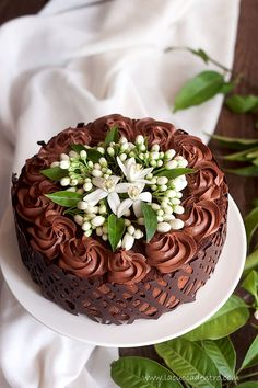 Chocolate Mousse Cake with Orange Blossom More