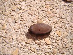As sementes permanecem viáveis por muitos anos se armazenadas em local arejado e fresco.