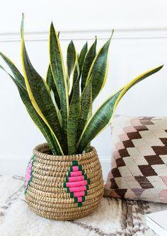Handwoven Berber planter basket