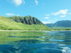 ☆虹色うみたび4☆ ぷかぷか  ハワイの海でプカプカ、イルカを待ってる時間。  海から見てもハワイの景色は素晴らしい♪  山の緑が海の青に溶けそうだよ。  FUJIFILM XQ1+防水プロテクター WP-XQ1 撮影協力 ハワイ オアフ島  Photography by Sachi Murai http://www.facebook.com/muraisachi
