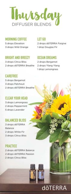 Welcome to my doTERRA Diffuser Blends index. There is basically an unlimited number of ways to use doTERRA essential oils. Doterra Diffuser, Essential Oil Diffuser Blends, Doterra Essential Oils, Doterra Blends, Best Essential Oils, Essential Oil Uses, Elixir Floral, Sassy, Diffuser Recipes