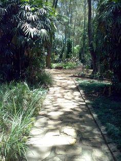 Passos do Parque corretor segantini