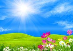 Image of & flowers on a green glade under the blue sky& Spring Background Images, Dslr Background Images, Background Clipart, Cartoon Background, Photo Backgrounds, Sunshine Wallpaper, Field Wallpaper, Hd Wallpaper, Beautiful Landscape Wallpaper
