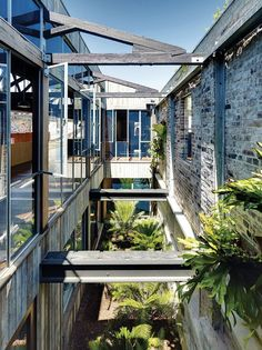 Lilyfield Warehouse | Sydney, Australia | Virginia Kerridge Architect | photo by Michael Nicholson