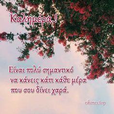 Εικόνες Τοπ:Όλη η ομορφιά χρωμάτων σε μια καλημέρα.! - eikones top Good Morning Flowers, Good Morning Good Night, Good Morning Quotes
