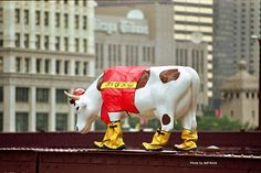 Remember Cows on Parade, Chicago? (Chicago Pin of the Day, 4/22/2014). From Flickr - Photo Sharing!