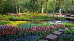 Jardines de Keukenhof: Un paraíso de flores en Holanda