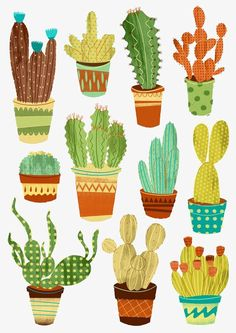 Eleven potted cacti in spirit – Cactus Drawing - Kaktus Succulents Drawing, Cactus Drawing, Cactus Art, Cactus Painting, Watercolor Plants, Watercolor Art, Illustration Cactus, Illustration Sketches, Desert Art