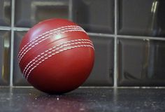 Stress Toy Tuesday: Make sure you bowl a really good promotion with these Cricket Ball toys. If someone didn't want one of these, well that's not Cricket. http://www.promoparrot.com/giveaways/stress-balls-stress-toys/bespoke-stress-toy.html #cricket #stress #toy #tuesday #ball