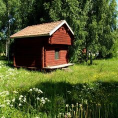 Timmerhus / SOooo cute color and makes WEEDS look glamorous ; Swedish Cottage, Wooden Cottage, Swedish House, Countries To Visit, Midnight Sun, Swedish Design, Red Paint, Scandinavian Home, Life Is Beautiful