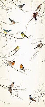 Komar Fotobehang Birds 2-1014 | Komar Fotobehang | www.behangwereld.nl