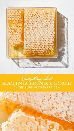Eating honeycomb might not be something that you've ever tried. This rare treat from the hives makes a unique addition to kitchen table! Honey Packaging, Honey Recipes, Cheese Platters, Eating Raw, Different Recipes, One Pot Meals, Honeycomb, Yummy Treats, Sweet Tooth