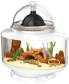 BioBubble Reptile Terrarium, Silver  - Introduces modular and expandable terrariums to the reptile hobbyist - Removable Bedding Tray for easy upkeep - Terra Base designed to work with - Biobubble Risers and accessories for endless options - Easily transforms into a customizable small animal habitat with the addition of a Bungalow -- - Deck and makes a perfect home for your pet  BUY NOW --> http://amzn.to/1GTnWsa  MORE REPTILE GADGETS --> http://mypetgadgets.com/reptile-gadgets/