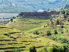 Les vins du Douro, Portugal - via Vino2Travel 23.04.2015   Le Douro est assurément l'une des plus belles régions viticoles au monde. Ses paysages de vignes centenaires cultivées en terrasses sont d'ailleurs classés au patrimoine mondial de l'UNESCO.