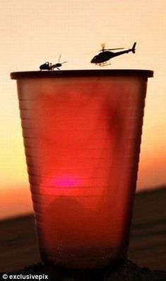 The ant crawling around the rim of this plastic cup looks poised to take on the helicopter swooping in.  Amazing pictures that make you look twice, click to see all