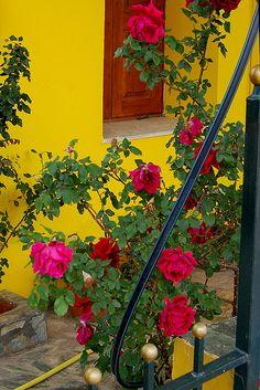 Village of Vamos on the Greek island of Crete
