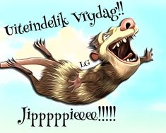 G Morning, Afrikaanse Quotes, Goeie Nag, Beautiful Words, Happy Friday, Funny Pictures, Funny Pics, Humor, Cat Cat