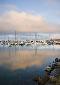 Pillar Point Harbor by Half Moon Bay is a great place to visit when coming to a www.weddingsbythesea.com ceremony.