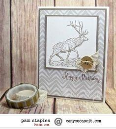 Pam CYCI#92 - SU - masculine birthday - The Wilderness Awaits stamp set