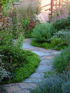 flagstone and gravel through a planting