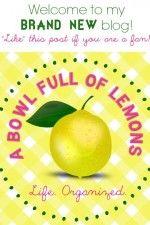 Want a good organizing blog? Here's a good one! A Bowl Full of Lemons via @Toni Hammersley (A Bowl Full of Lemons)