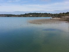 Le lac d'Arjuzanx #landes #arjuzanx #morcenx #lake