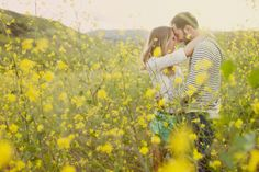 Something about a yellow dressed field makes me melt.  Photo by This Modern Romance.