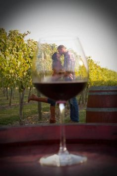 Hinterland Vineyard/Winery pictures