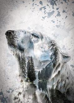 Nature Artwork, Cool Artwork, Polar Bear Paint, Polar Bear Tattoo, Paint Photography, Photography Sketchbook, Bear Tattoos, Tatoos, Bear Paintings