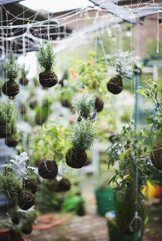 Hanging planters string garden decorations backyard ideas