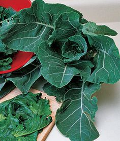 Collards, Georgia A southern favorite that is high in calcium. Tender, blue-green leaves that will withstand light frost. The mild cabbage-like flavor actually improves with a light frost. Plant in spring and again in late summer for a fall to winter harvest. Avoid areas where any of the cabbage family members were grown the previous year.
